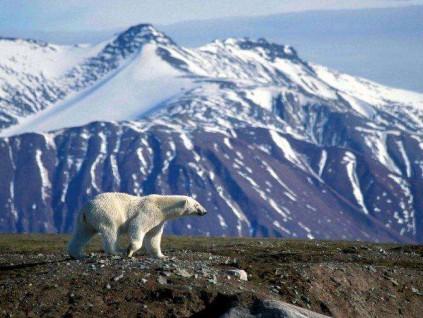 英国研究: 2050年气候变化或给世界经济造成逾10万亿元损失