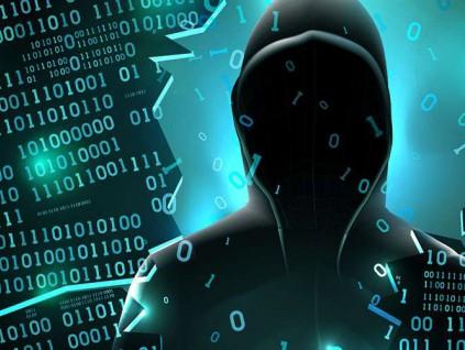 参与美国网络攻击的黑客在美服刑期满后继续任教