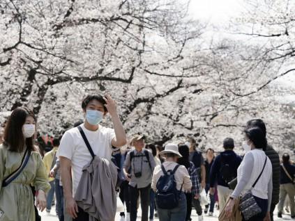 布口罩能否防病毒?日本专家:普通人用布的就可以