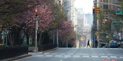 空旷的纽约公园大道
