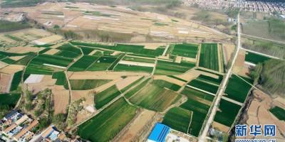 农田、山岭和村庄形成一片壮丽的大地色块