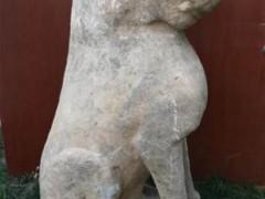河北隆尧发现元末明初石虎雕刻 已被文保部门收藏