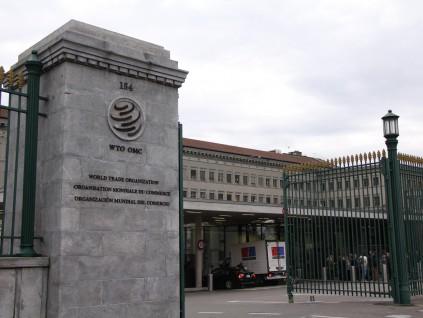 世贸组织新总干事遴选程序出炉 将加速选拔