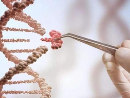 社评:基因编辑再设限 基因疗法会受影响吗