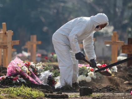 全球累计新冠确诊病例破3000万起 死亡近95万