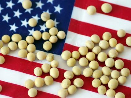 中国大量购买大豆 美国的出口升至同期历史纪录