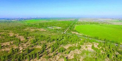 中国四大沙地之一毛乌素沙地将变绿洲