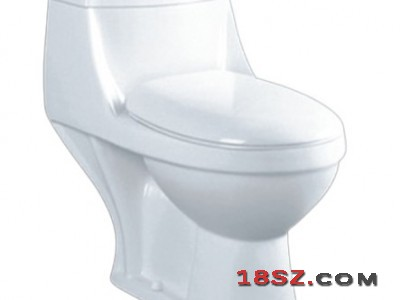 ONE-PIECE TOILET ZT-600