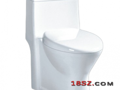 ONE-PIECE TOILET ZT-062