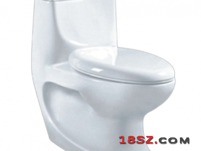 ONE-PIECE TOILET ZT-930