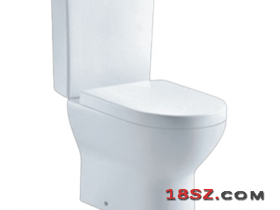 TWO-PIECE TOILET ZT-7003