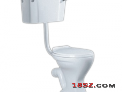 TWO-PIECE TOILET ZT-509