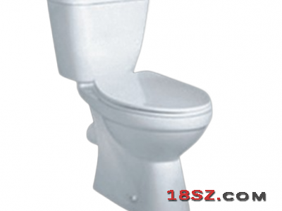 TWO-PIECE TOILET ZT-444