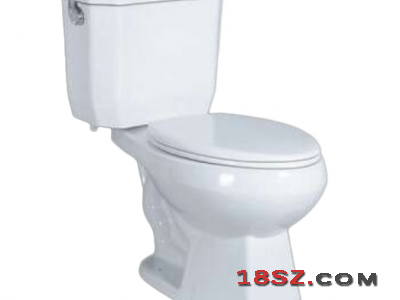 TWO-PIECE TOILET ZT-7001