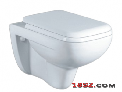 WALL-HUNG TOILET ZT-1014