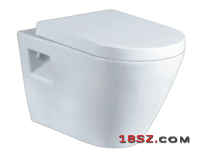 WALL-HUNG TOILET ZT-1018