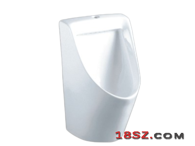 WALL-HUNG URINAL ZT-540
