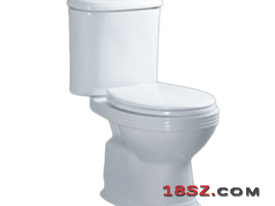 TWO-PIECE TOILET ZT-101A