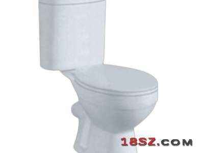 TWO-PIECE TOILET ZT-080