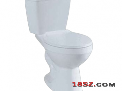 TWO-PIECE TOILET ZT-630