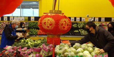 加拿大多伦多超市张灯挂龙迎接农历新春