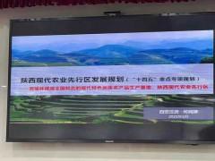 煤炭能源化工支持榆林成为现代农业先行区