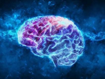 大脑视丘受低强度超音波刺激 有机会唤醒昏迷者