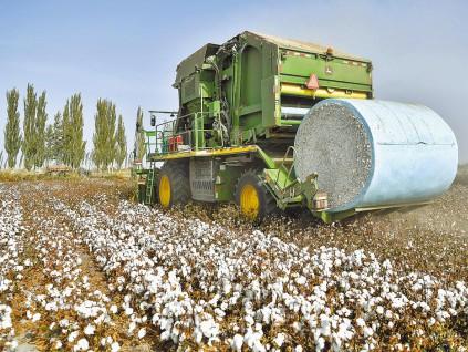 制定中国标准 未来棉花启动 六月召开会议计划