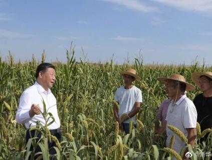 习近平赴陕西考察 强调煤炭能源要改走绿色低碳