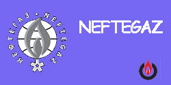 Neftegaz 2017 Final Report